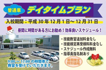 普通車・デイタイムプラン【H30.12.1~12.31】