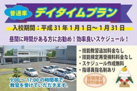 普通車・デイタイムプラン【H31.1.1~1.31】
