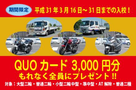 3月他車種キャンペーン【H31.3.16~3.31】