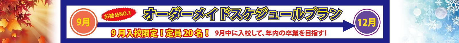 オーダーメイドプラン【普通車】